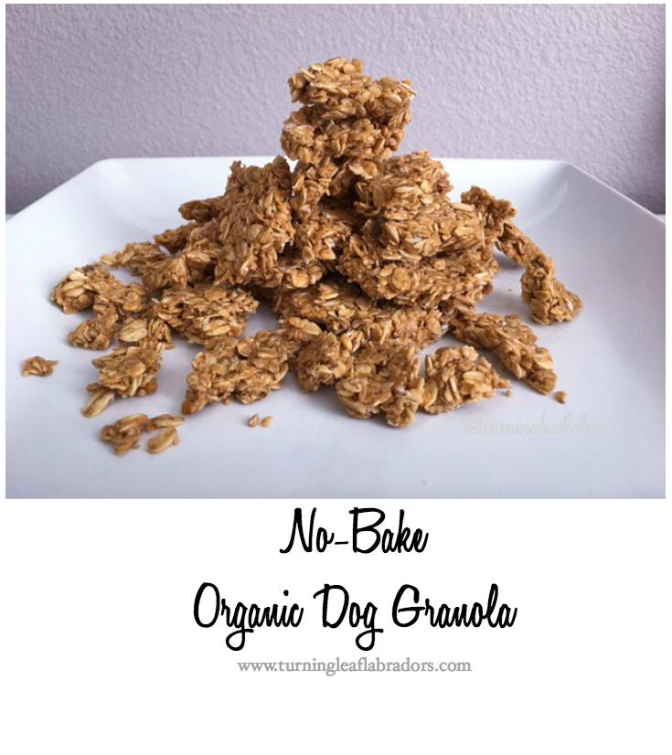 Granola Dog Treats Recipe